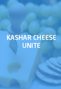 Kashar Cheese Unite